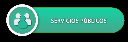 icon servicios